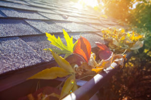Colorful,Fall,Leaves,In,The,Gutter,On,A,Roof